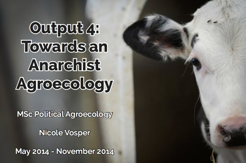 Output 4 Cover anarchist.jpg
